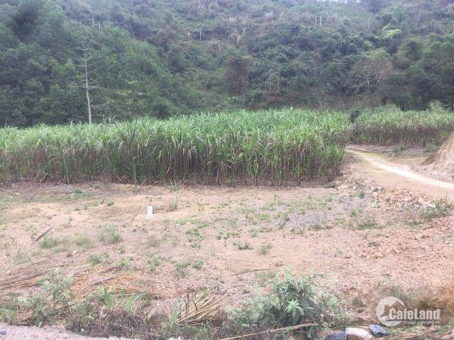 Bán lô đất 1,3ha mặt tiền cao tốc mới Hòa Lạc-Hòa Bình, giá 5,5 tỷ.