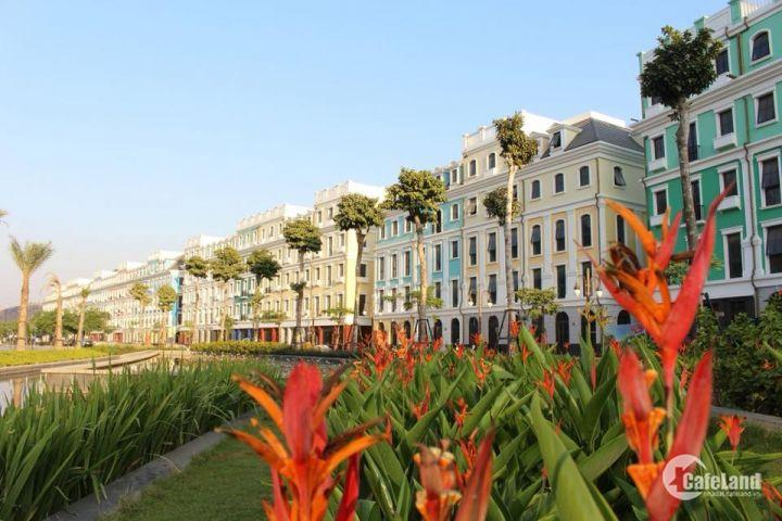 Bán nhà phố Bãi Cháy, Hạ Long, 570m2, 5 tầng, bán lỗ 500tr