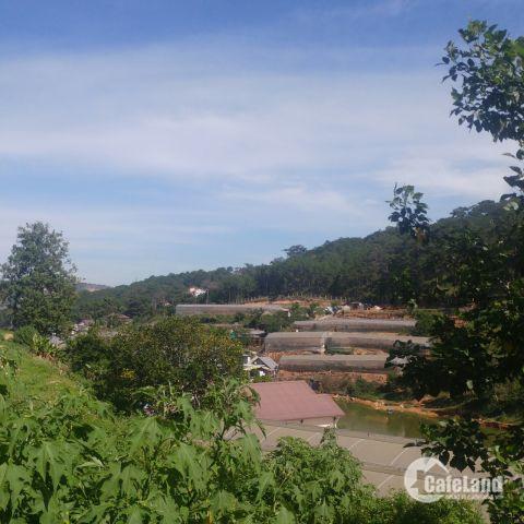Cần Bán Đất Liên Kế - Triệu Việt Vương - P4 - Đà Lạt. View Đẹp. Chỉ Từ 3 Tỷ