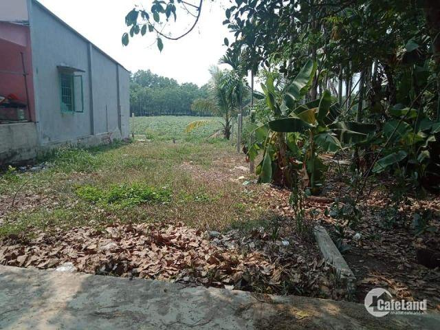 Bán gấp Đất nền DT 5x35m, có sổ riêng, vị trí đẹp - Trảng Bàng Tây Ninh CHỈ 385triệu