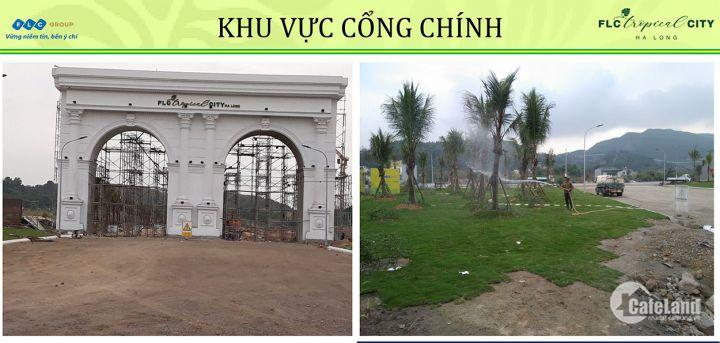 FLC Tropical City Hà Khánh mở liền kề,shophouse,chung cư,biệt thư