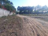 Bán 2.2 mẫu đất chính chủ đường vào Vingroup chỉ 1.35 tỷ/sào