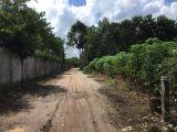 Chỉ 2.2 triệu/m2 diện tích 10300 m2 đất đã hạ tầng đường Bàu Cạn