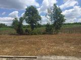 Tôi cần bán 300m2 đất quy hoạch đất ở nông thôn Long Phước