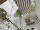 Bán nhà trệt lầu mặt tiền đường Phạm Ngũ Lão, Ninh Kiều, Cần Thơ