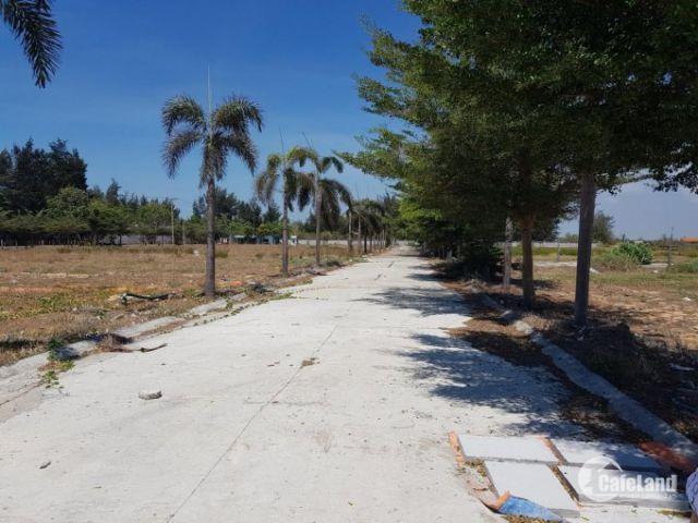 Đất nền đầu tư mới dự án Thanh Sơn c