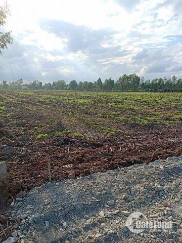 Bán đất dự án sân goflt hoàn cầu 2000m2 giá rẻ thúi chỉ 600k/m2