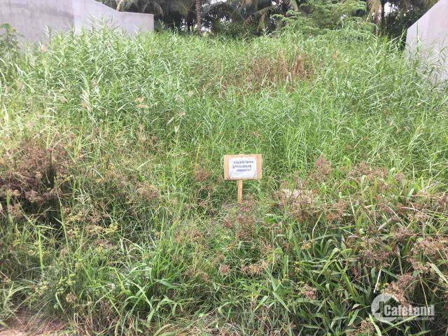 cần tiền bán đất chính chủ, cách đường phạm ngọc thảo 200m,hẻm 5m