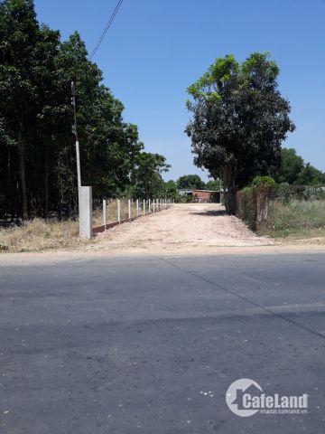 Cần bán gấp đất QL 22B, gần ngã tư Bình Minh, Châu Thành, Tây Ninh.