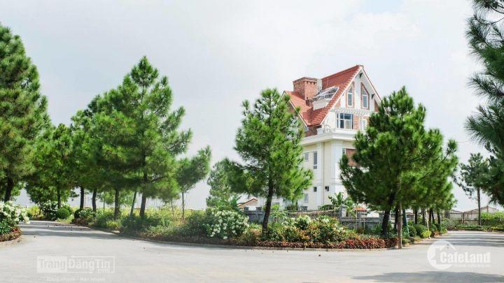 Bán nhà biệt thự - Dự án The Phoenix Garden, Đan Phượng chỉ từ 5 tỷ/200m2