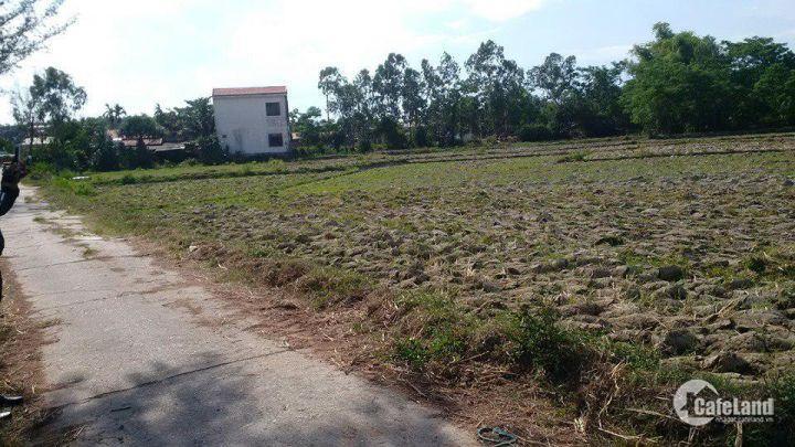 Cần bán đất tại Nam Hòa Phước Đà Nẵng. LH 0764758474