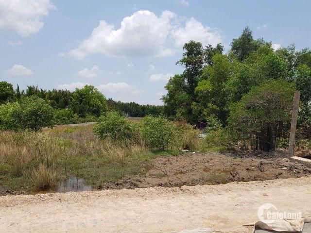 Đất Đường Rừng Sác, Cần Giờ, sổ hồng chính chủ 3,75 triệu/m2