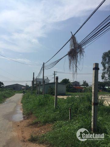 Đất Mặt Mặt Tiền Đường Nhựa Lớn xã Hòa Phú, Củ Chi