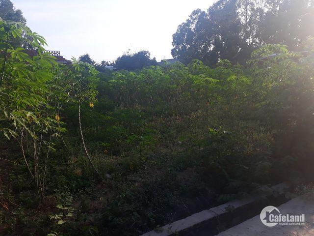 Bán đất trung tâm xã Tân Hiệp, Long Thành chỉ 2,8 triệu/m2