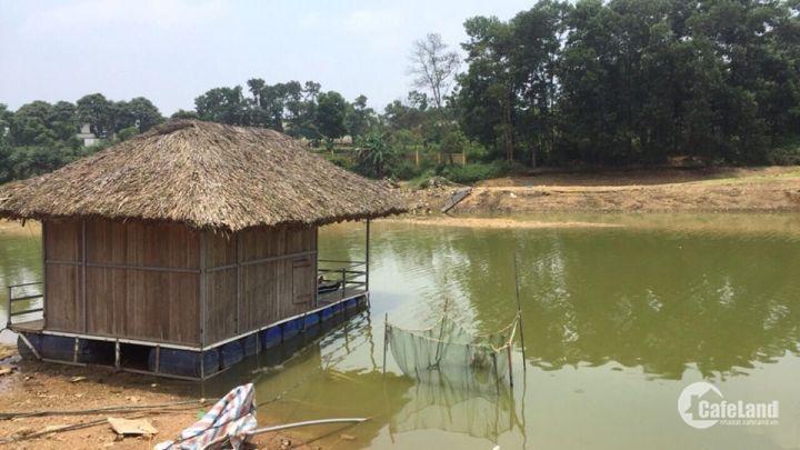Dự án đất nền duy nhất tại Hòa Lạc View Hồ tự nhiên giá chỉ từ 8,5 triệu/m2.