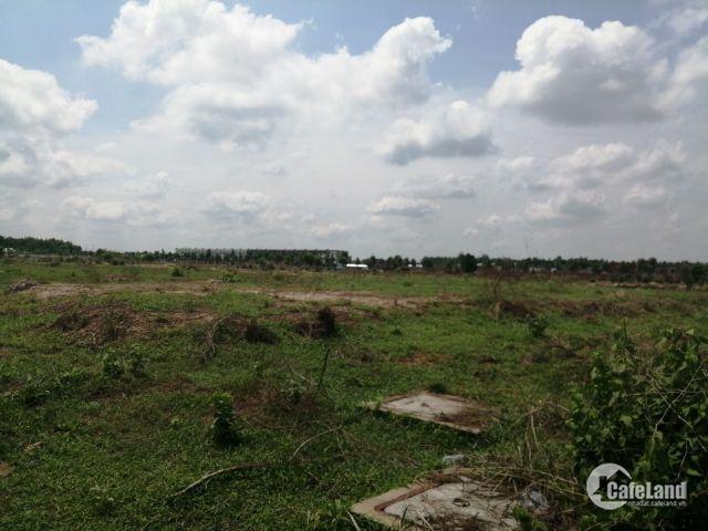 Đất TTHC Bàu Bàng 80m² SHR chỉ 600tr thổ cư 100%