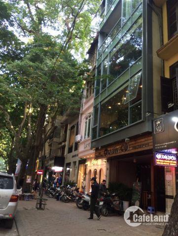 Bán nhà mặt phố Huỳnh Thúc Kháng, Đống Đa 60m2, 5 tầng, mặt tiền 4.5m, LH: 0911150258
