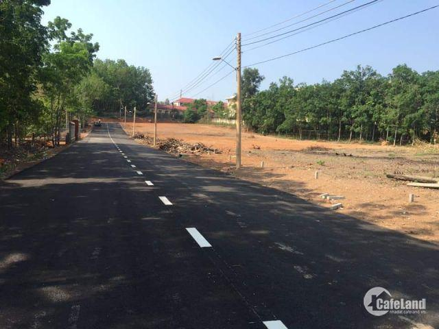 Đất Tân Đồng cách QL 200m cơ sở hạ tầng đầy đủ