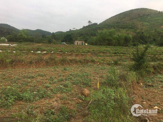 cần chuyền nhượng 2ha đất làm nhà máy nhà xưởng tại huyện kỳ sơn tỉnh hòa  bình