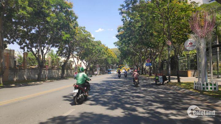 MT Nguyễn Đình Chiểu , phường 2 ,  Quận 3.