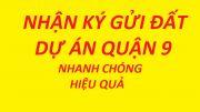 Bán đất dự án Thời Báo Kinh Tế SG phường Phú Hữu Q9