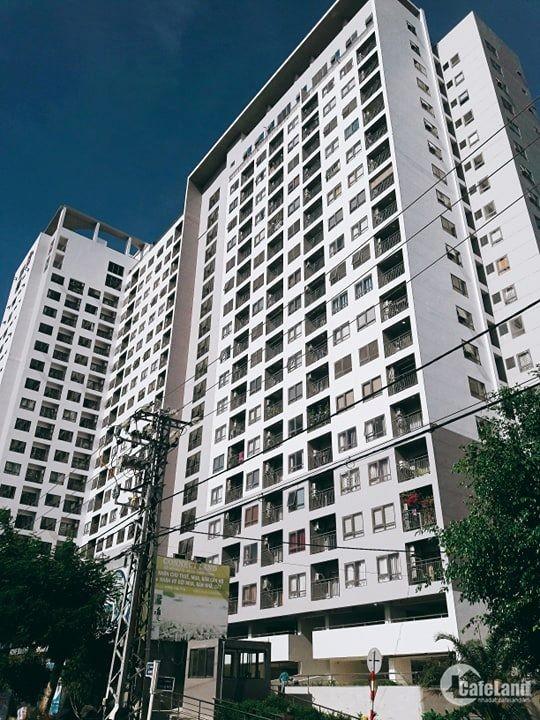Bán căn hộ khả năng sinh lời cao