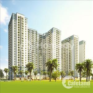 Cho thuê căn hộ M-One 1 phòng ngủ 1WC, full nội thất cao cấp, giá 11triệu/tháng