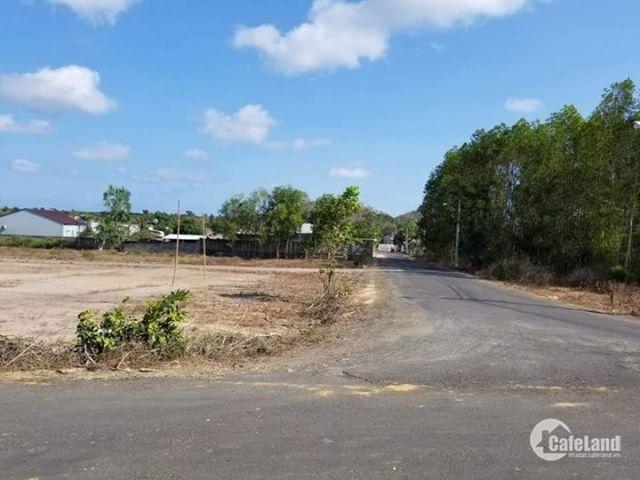 Đất TT Phước Bửu, đường Vành đai, đường nhựa 7m
