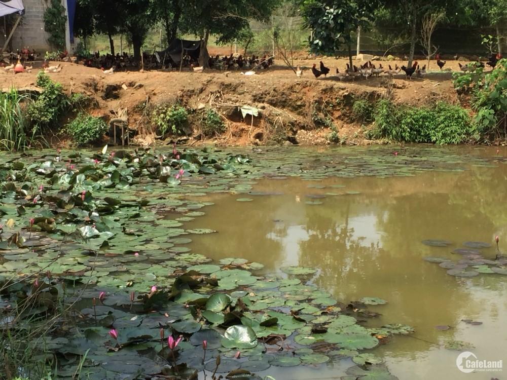 Cần bán gấp lô đất view đẹp tại Khoang Xanh, Ba Vì, giá 150 triệu/sào