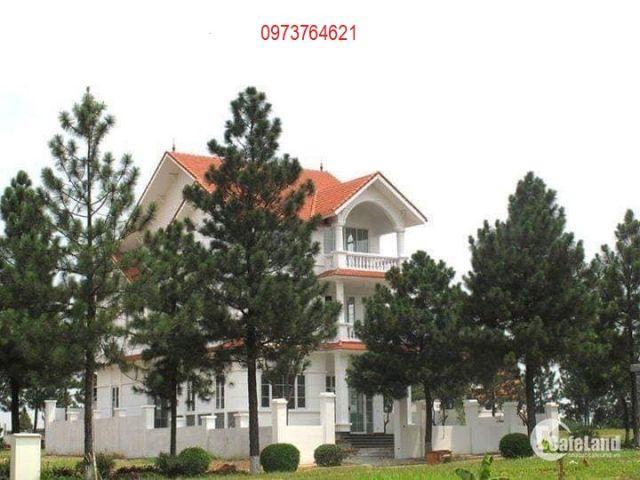 Sở hữu biệt thự The Phoenix Garden 200m2 đã có sổ đỏ, giá chỉ từ 19tr/m2. LH 0973764621