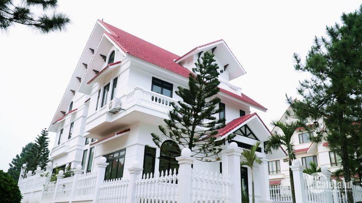 Biệt thự The Phoenix Garden Đan Phượng - khu sinh thái đẳng cấp nhất tại Hà Nội, với mô hình Đà Lạt thu nhỏ duy nhất giữa lòng thủ đô.