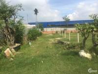 Cần Bán Lô Đất Gần Chợ Sáng Tân Thạnh Đông 5x18,5m
