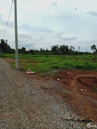 Đất sào thổ cư cách QL1A 500m,sau UBND xã Hưng Lộc