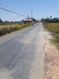 Cần bán gấp lô đất 1553m2 thuộc ấp 5, xã Phước Vân, huyện Cần Đước, SHR