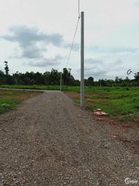 Đất sào cách QL1A 500m,sau lưng công ty may Đồng Nai 1tỷ440tr/1137m2.