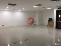 Văn phòng cho thuê Quận 3, mặt tiền Phạm Ngọc Thạch, 139 m2 - 23 usd/m2