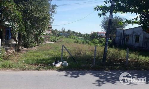 Cần tiền bán gấp miếng đất đường Suối Lội, xã Phước Vĩnh An, Củ Chi, 480 triệu