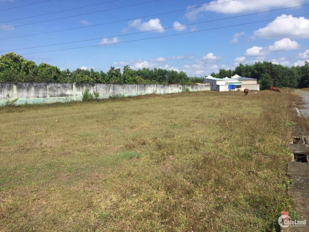 Chính chủ bán thửa đất 50/175 Long Phước, gần sân bay Long Thành, Vingroup, 554m