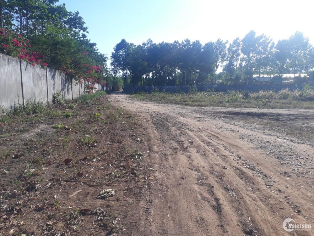 Chính chủ cần bán 3 lô đất trung tâm xã Tân Hiệp, giá tốt cho các nhà đầu tư.