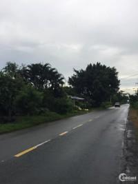 Đất mặt tiền Nguyễn Thị Rành kế bên khu Cluphouse, khu Safari Xã Phú Mỹ Hưng
