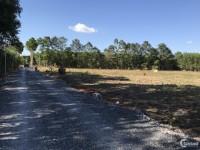 Cần tiền gấp bán lại 9500m2 đất sau lưng UBND Tân Hiệp có 200 m2 thổ cư.