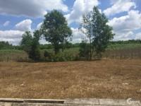 Bán đất ở nông thôn, gần sân bay Long Thành, Vingroup chỉ 4.6 triệu/m2.