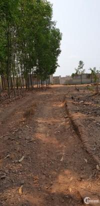 2235.6m2 đất trống trong đó có 100m2 thổ cư, giá 2.2 tỷ tại thị trấn Vĩnh An, ĐN
