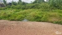 Đất xã Thái Mỹ,Huyện Củ Chi 4000m².