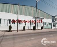 Chính chủ cho thuê nhà xưởng mới xây tại Hà Trung Thanh Hóa diện tích 10.000m2 g