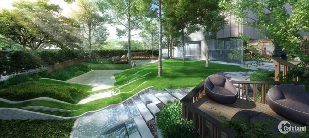 Mua ngay kẻo lỡ! Cơ hội lợi nhuận 20%-30% căn hộ Ascent Garden Homes đợt 1