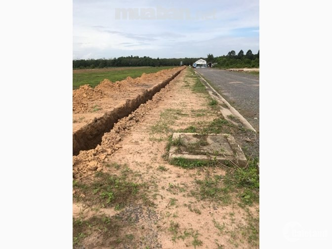 Bán đất nền Long Thành Đồng Nai diện tích 100m2 , sổ hồng riêng , giá 650tr/nền