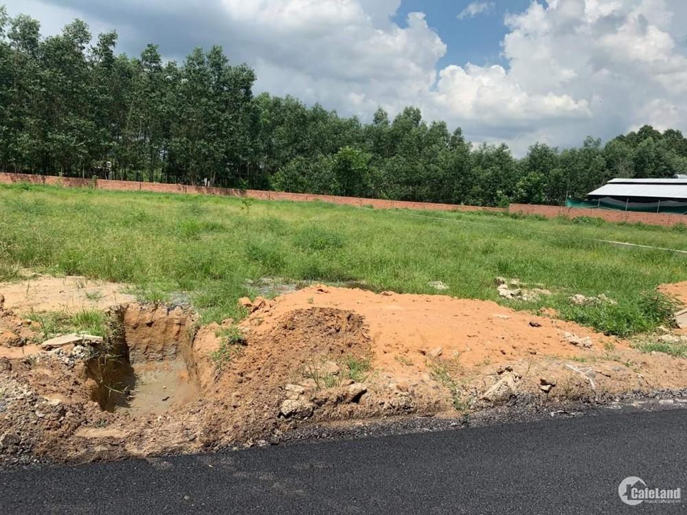 Cần tiền bán Gấp lô đất 200m2 có thổ cư gần khu công nghiệp BECAMEX