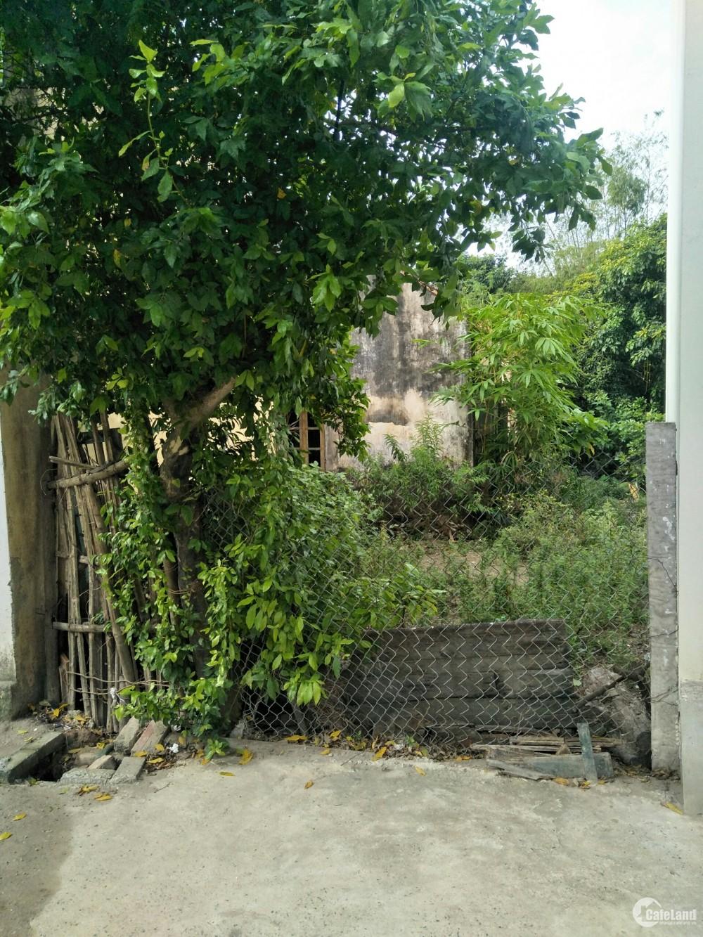 Đầu tư đất Đình Quán, Bắc Từ Liêm còn gì bằng, lh 0984803901
