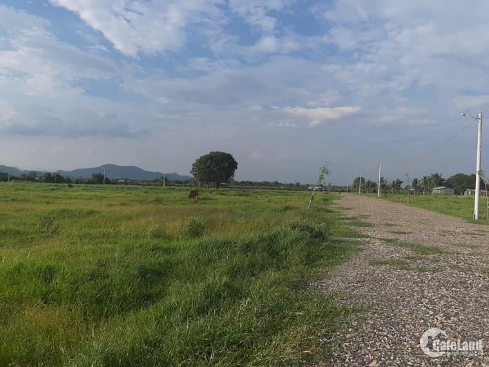 bán đất xào Đại Lộc,Hàm Hiệp thích hợp xây nhà vườn sinh thái